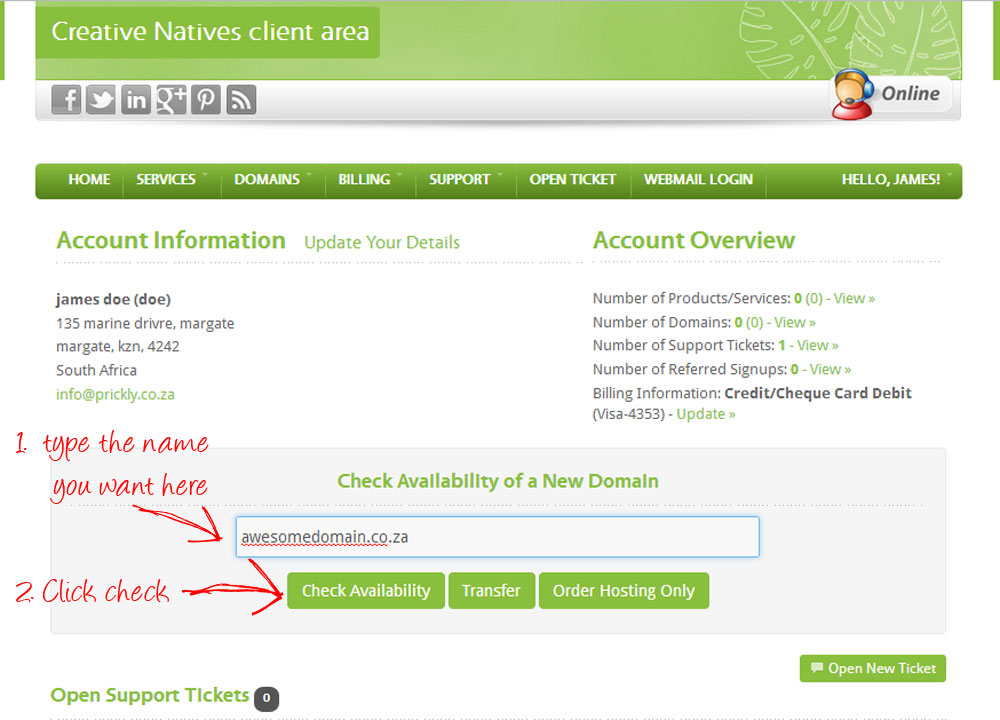 How to check for and order available domain names